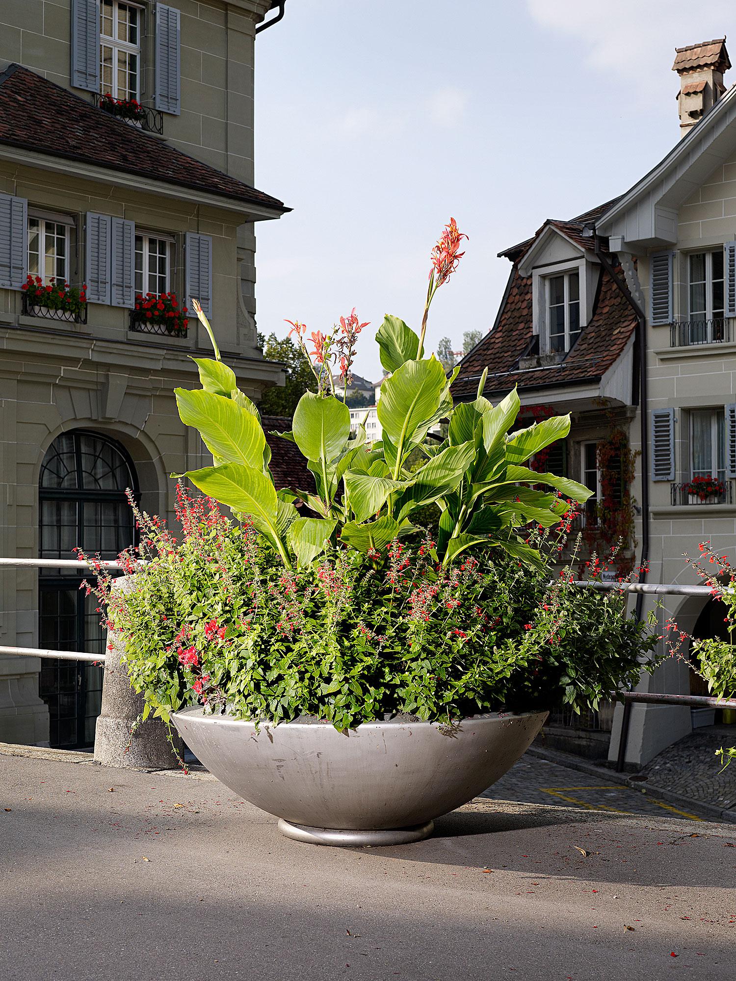 Berner Schale, Bern, 2004
