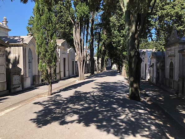 cemeterio-lisboa.jpg#asset:2105