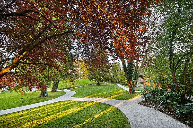 Wildermettpark, Bern, 2014