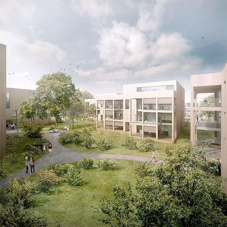 1. Rang / 1. Preis Studienauftrag Wohnüberbauung Falkeisenmatte, Zofingen, 2014